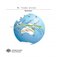 Trade winds - Summer